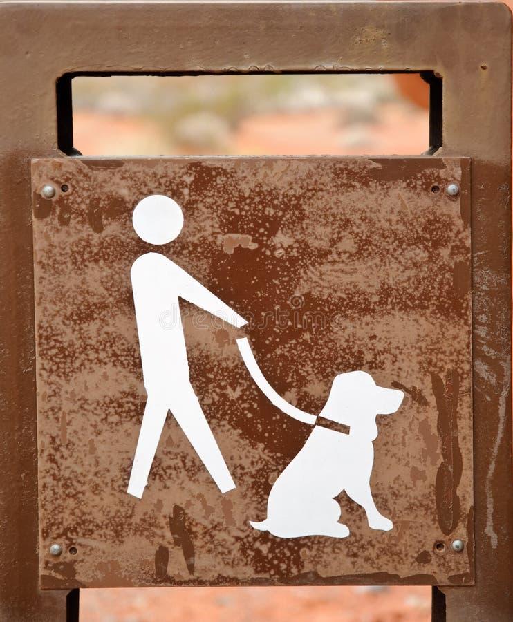 Hund nur auf Leine stockbild