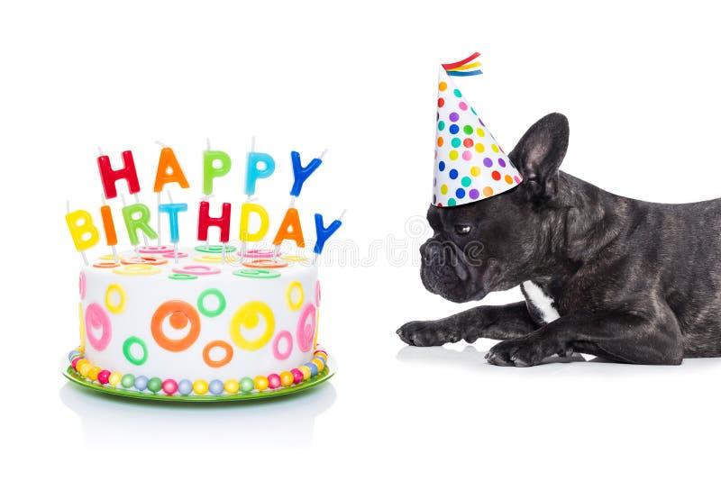 Hund och kaka för lycklig födelsedag arkivfoton