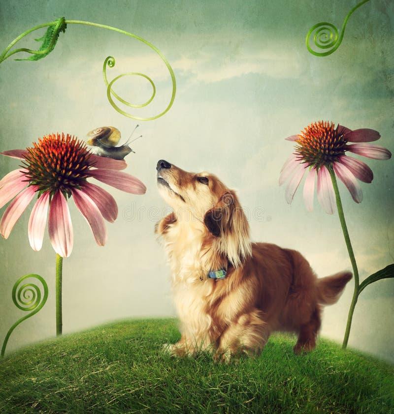 Hund och snigel i kamratskap i fantasilandskap royaltyfri bild