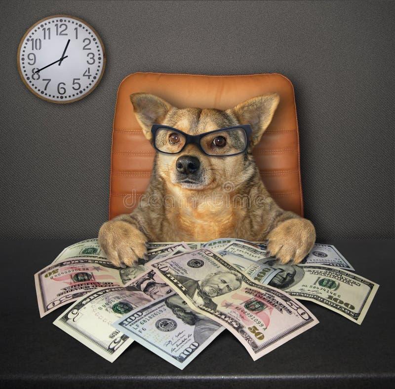 Hund på tabellen med dollar 3 arkivbild
