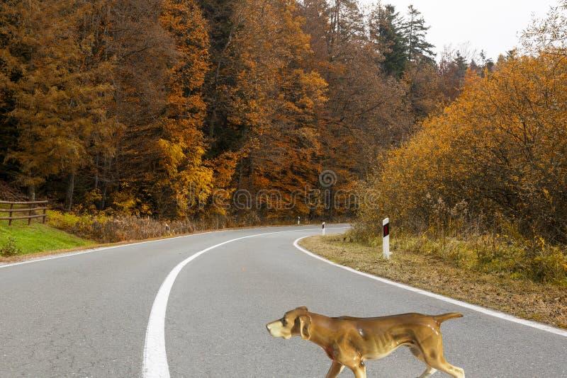 Hund på vägillustrationen arkivbild