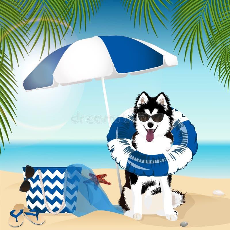 Hund Schwimmenring Sandy Beach Sommerzubehör vektor abbildung