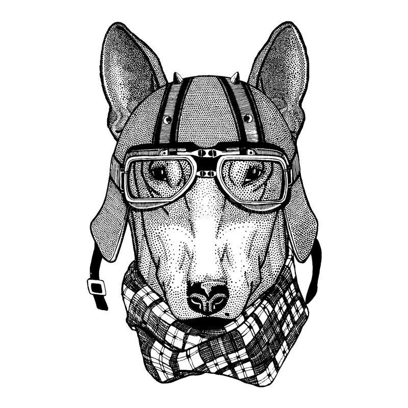 Hund som bär en motorcykel, aero hjälm Utdragen bild för hand för tatueringen, t-skjorta, emblem, emblem, logo, lapp royaltyfri illustrationer