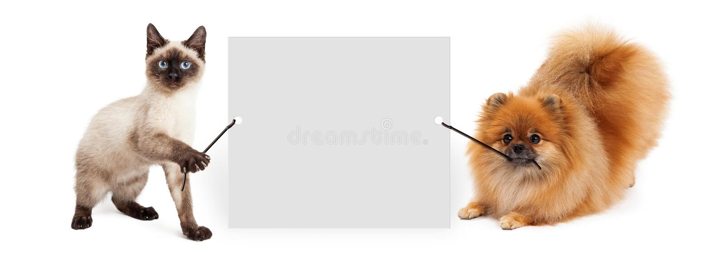 Hund und Cat Holding Up Banner lizenzfreie stockfotografie