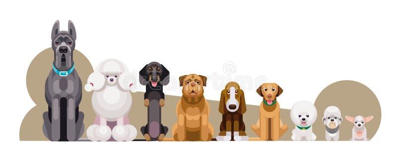 Hundar av olika raser efter vikt stock illustrationer