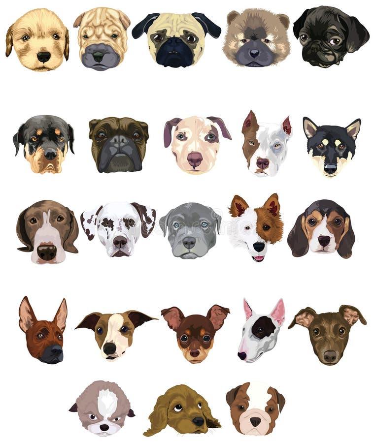 hundar ställde in royaltyfri illustrationer