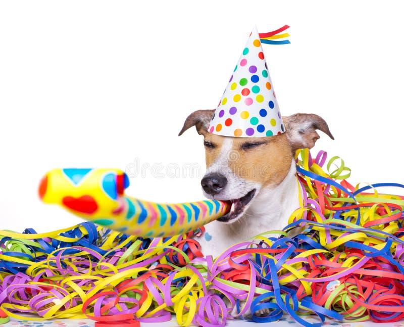 Hundceleberation för lyckligt nytt år royaltyfri bild