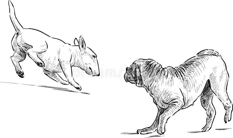 Hunde auf einem Weg lizenzfreie abbildung