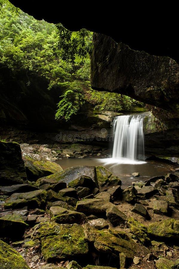 Hunde-Gemetzel-Fälle - Wasserfall - Daniel Boone National Forest - Süd-Kentucky lizenzfreie stockbilder