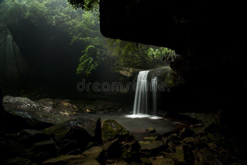 Hunde-Gemetzel-Fälle - Wasserfall - Daniel Boone National Forest - Süd-Kentucky lizenzfreie stockfotos