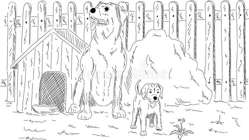 Hunde im Garten lizenzfreie abbildung