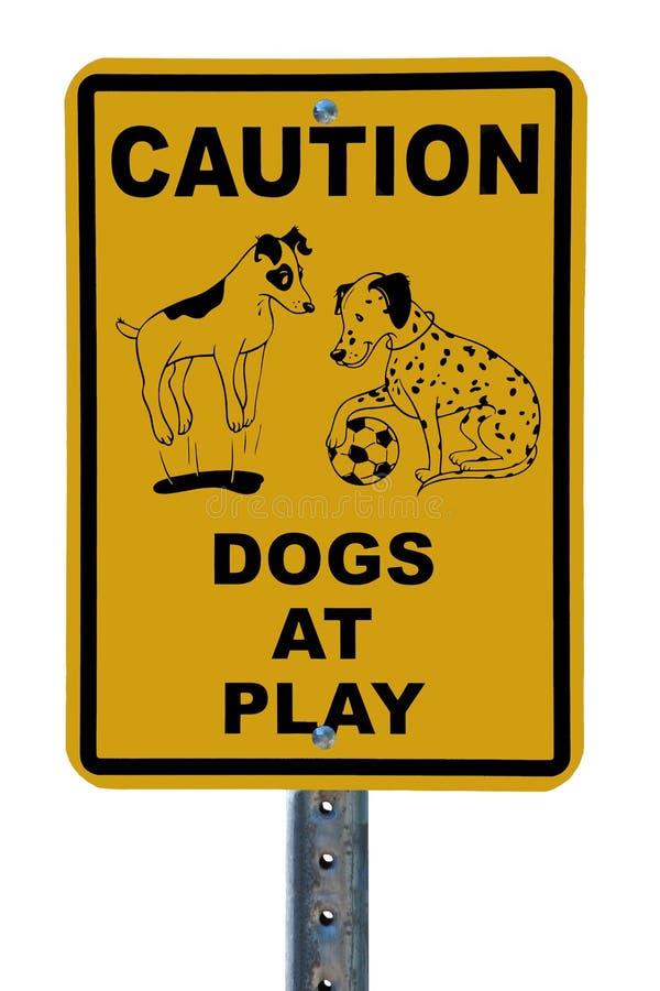 Hunde am Spielzeichen stockfoto
