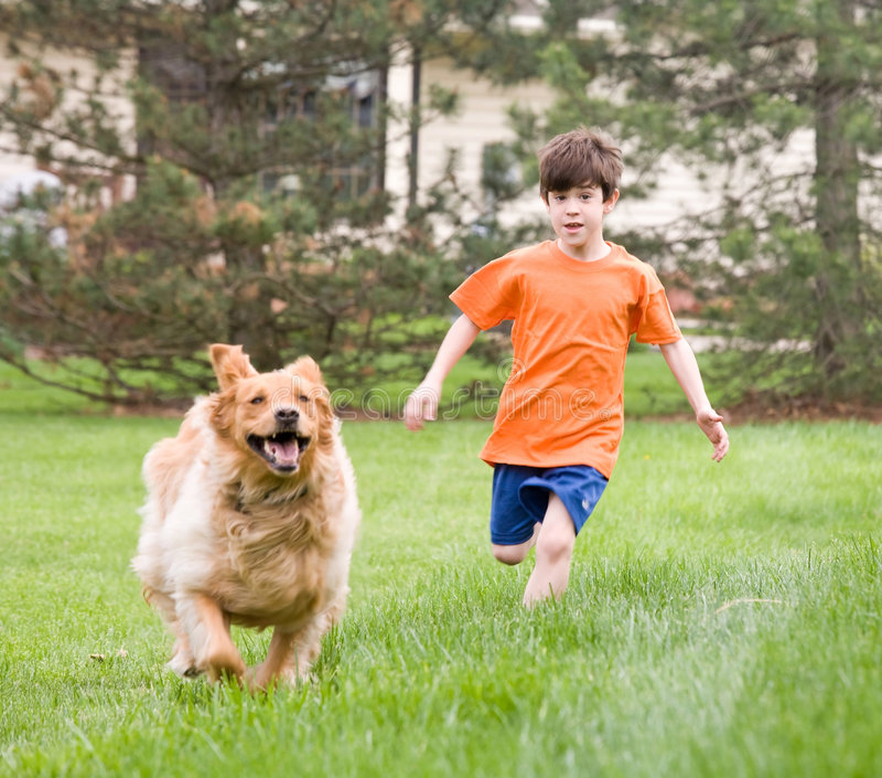 Hunde-und Jungen-Laufen stockfotografie