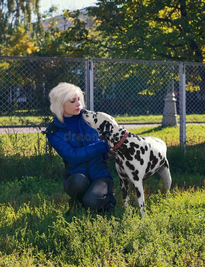 Hundedalmatiner und -frauen stockfotografie