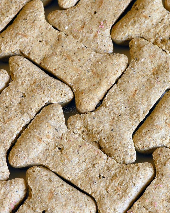 Hundeknochen-Muster Stockfotografie