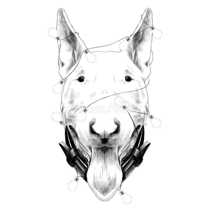 Hundekopf-Zuchtbullterrier-Skizzenvektorgrafik lizenzfreie abbildung