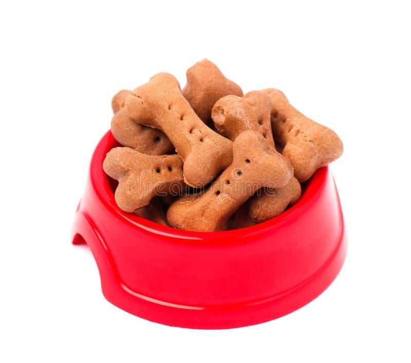 Hundekuchen in Form von Knochen in der roten Platte, auf Weiß lizenzfreie stockfotografie