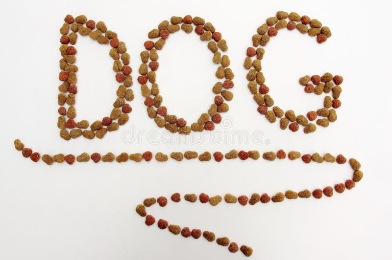 hunden äter liten mat önskar arkivbild