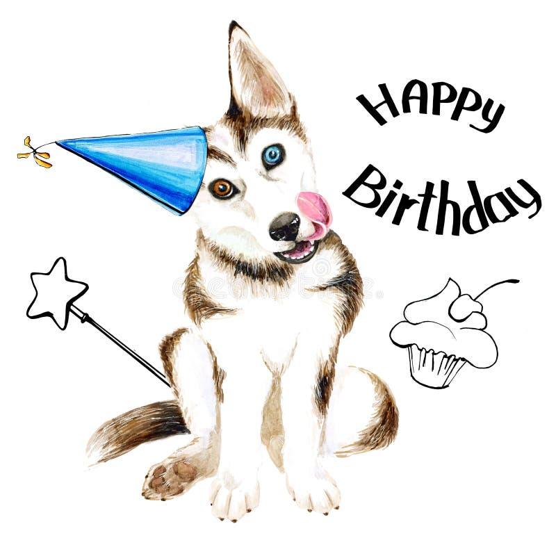 Hunden föder upp skrovligt Gullig valp med blåa ögon Födelsedag bakgrund isolerad white stock illustrationer