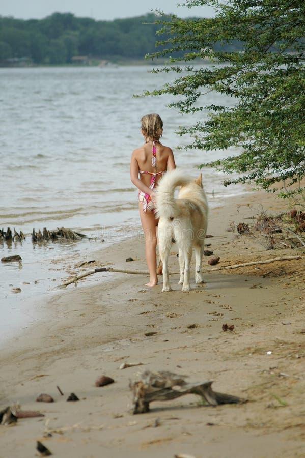 Download Hunden går fotografering för bildbyråer. Bild av hund, vänner - 996661