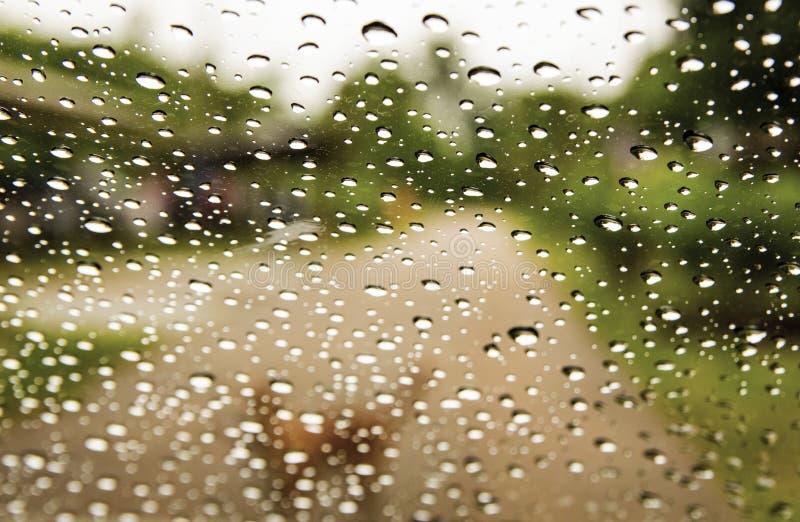 Hunden i regnet, ser hon lycklig, när hennes ägare är det kommande baksidahemmet, sikten bak fönstret av bilen arkivfoto