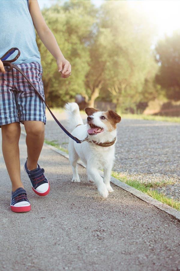 Hunden och barnet som går under en utbildningsgrupp på, parkerar med den blåa koppeln Lydnad- och kamratskapbegrepp arkivfoto