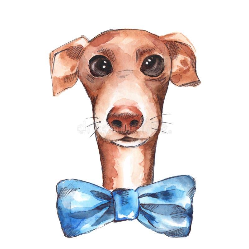 Hunden skissar isolerat på vit bakgrund royaltyfri illustrationer