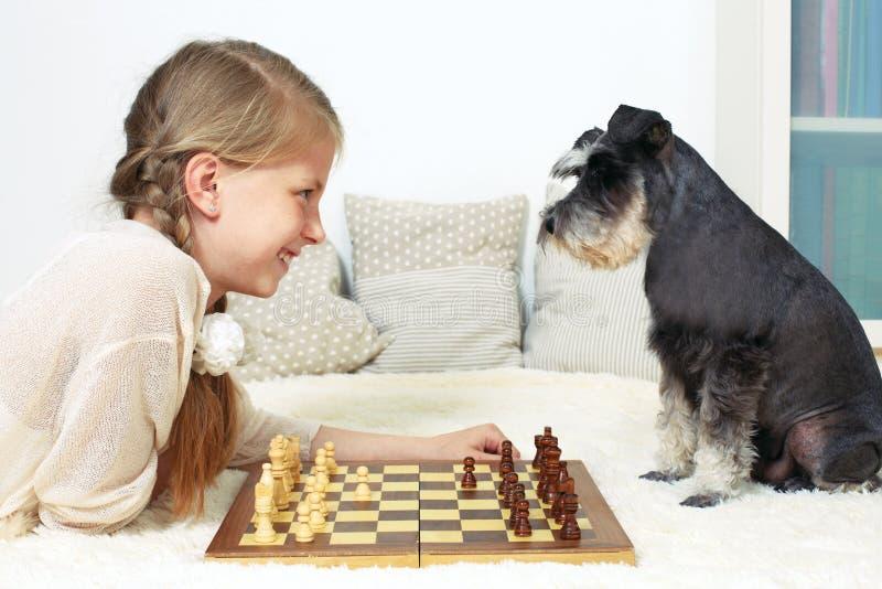 Hunden undervisar barnet att spela schack Din flyttning arkivbilder