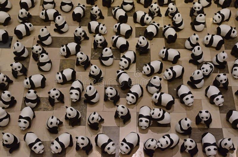Hundert von Pandas auf der Anzeige, zum des Bewusstseins zu erhöhen lizenzfreies stockbild