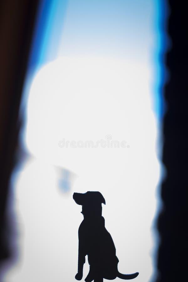 Hundesitzendes Schattenbild stockfotos