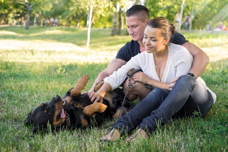 Hundespiele mit den Eigentümern auf Gras lizenzfreie stockbilder
