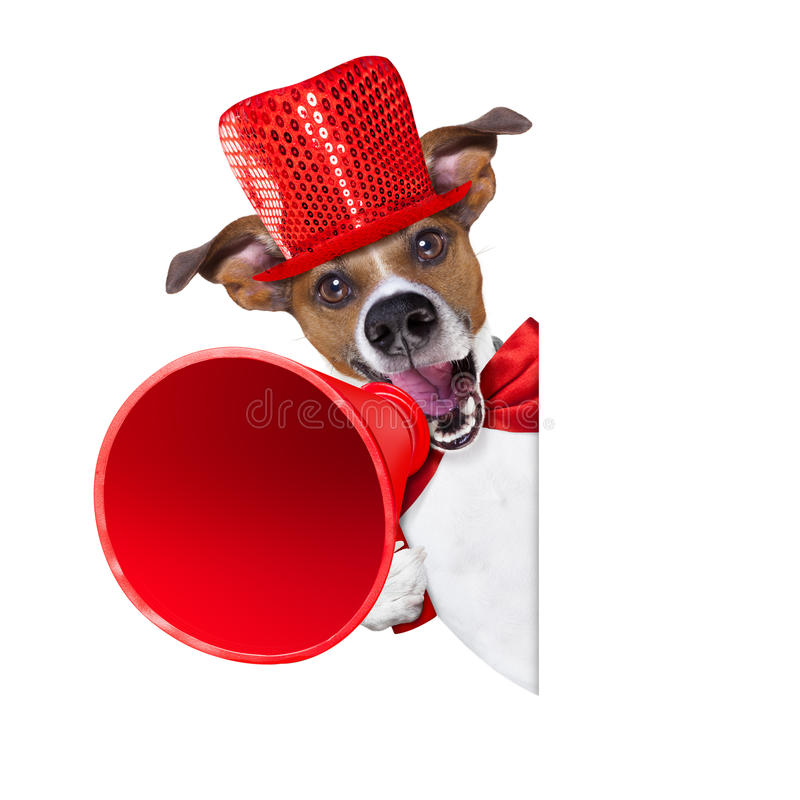Hundeverkaufsmegaphon lizenzfreie stockfotos