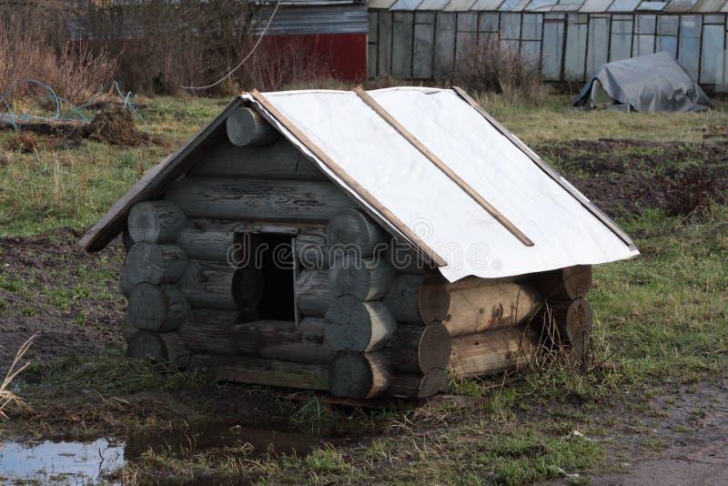 Hundhus i trädgården royaltyfri foto