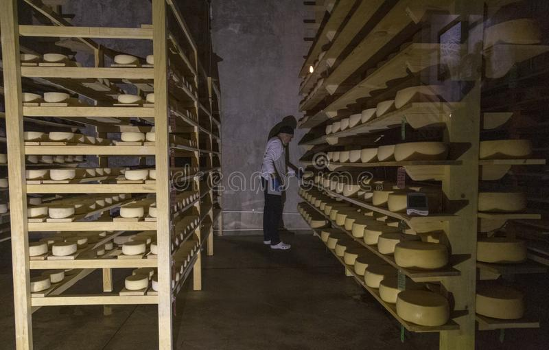 Hundido de quesos madurados en Tequisquiapan, Queretaro, México fotografía de archivo libre de regalías