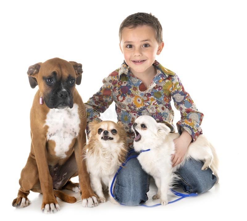 Hundkapplöpning och barn royaltyfri fotografi