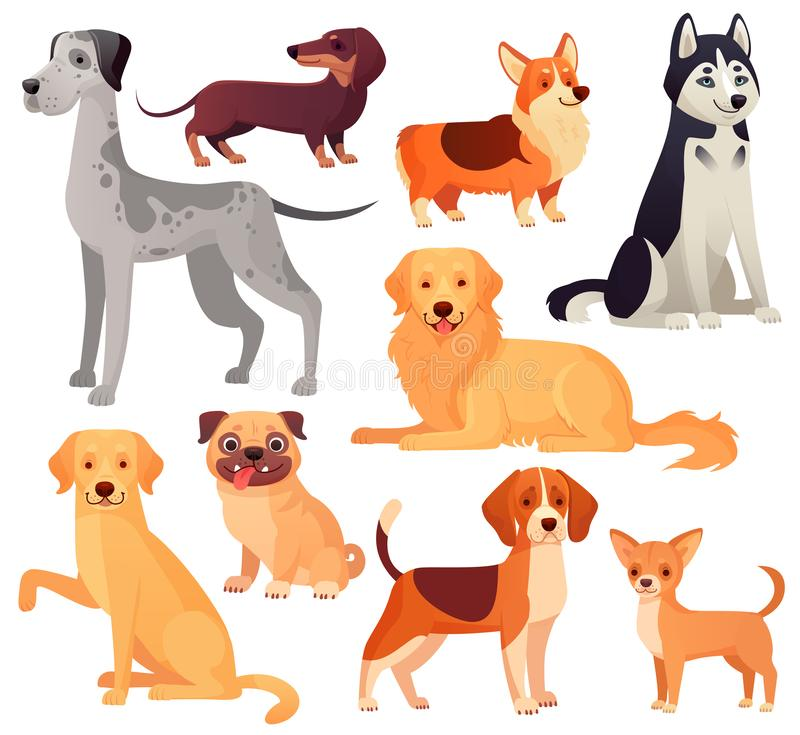 Hundkapplöpninghusdjurtecken Labrador, golden retriever och skrovligt Isolerad illustrationuppsättning för tecknad film vektor vektor illustrationer