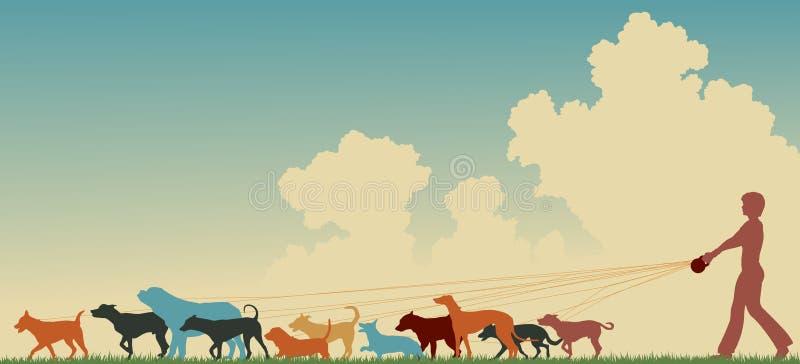 hundkvinnligfotgängare stock illustrationer