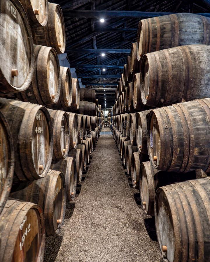 Cellar full of Port Casks, Vila Nova de Gaia, Portugal. Hundreds of seasoned oak barrels or casks, each containing approximately 630 litres of wine in just one stock photography