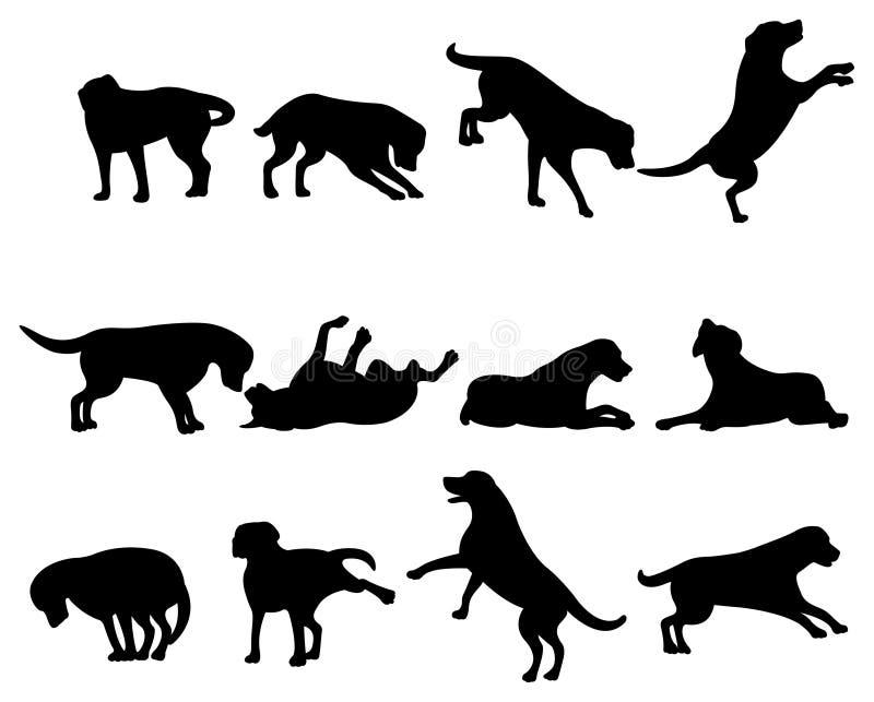 hundsilhouette