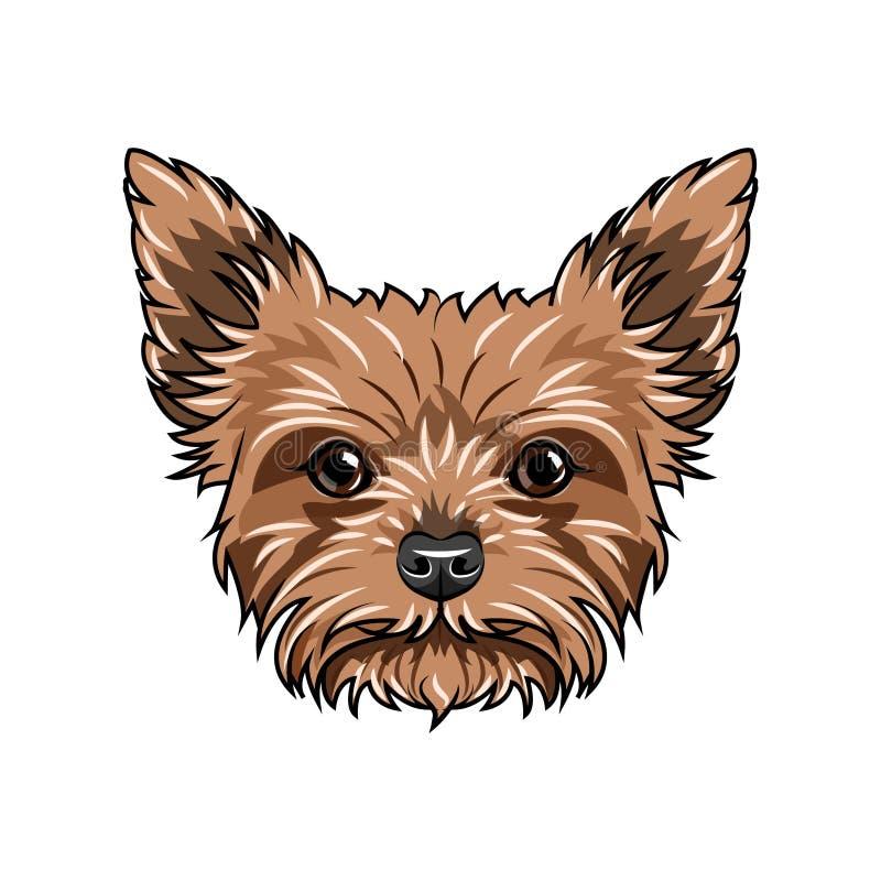 hundståendeterrier yorkshire Hundframsidan, huvud, tystar ned Yorkshire Terrier avel vektor royaltyfri illustrationer