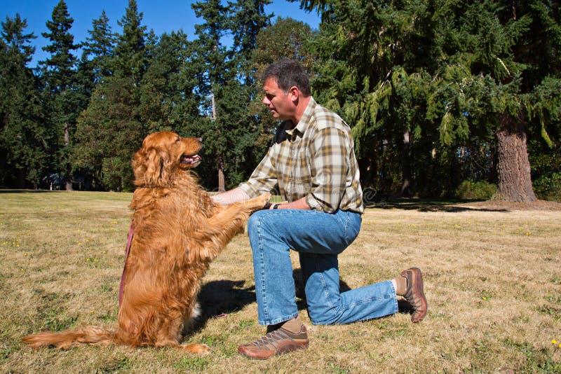 Hundutbildning på parken royaltyfria bilder