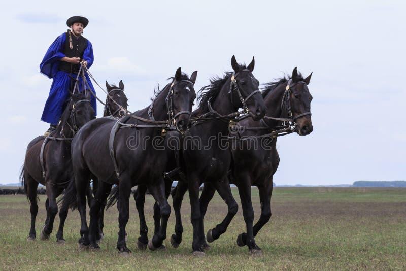 Hungarian Cowboys Editorial Stock Image
