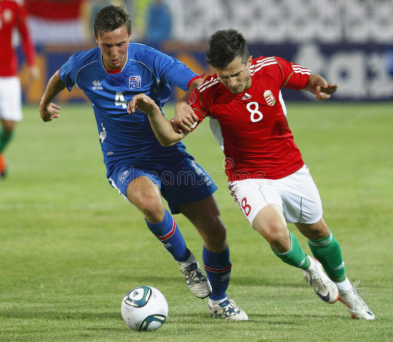 Download Hungary Vs. Iceland Football Game Editorial Image - Image: 20676055