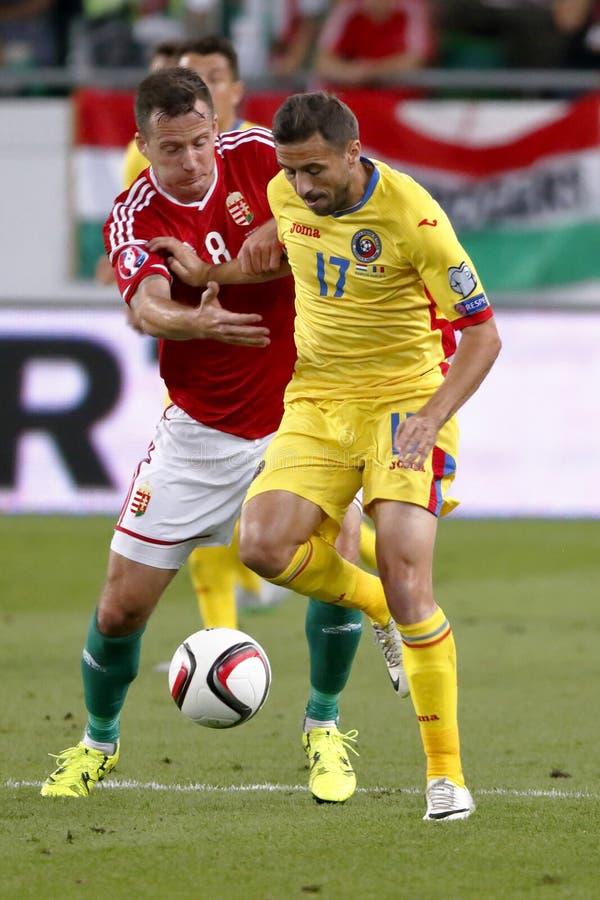 Hungría contra Países Bajos Partido 2016 de fútbol del calificador del euro de la UEFA de Rumania imagenes de archivo