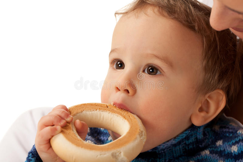 Hungry boy. Boy is nibbling dry biscuit sitting on mother's knees stock image