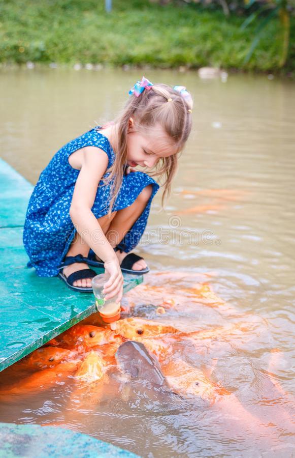 Hungry gold asian fish eats food from bottle in the pond. little beautiful girl feeds fish stock photo