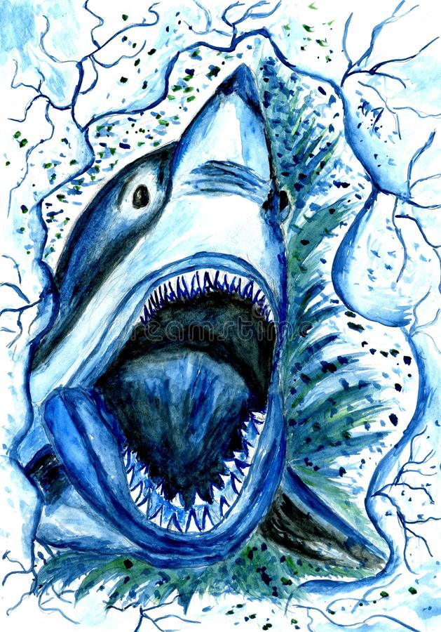 Hungry Shark Drawing vector illustration