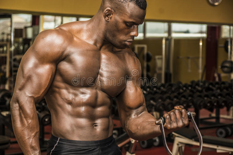 Hunky muscular black bodybuilder working out in gym royalty free stock photo