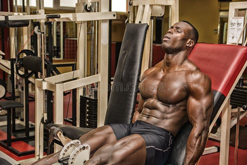 Hunky muskulöser schwarzer Bodybuilder, der in der Turnhalle ausarbeitet stockbilder