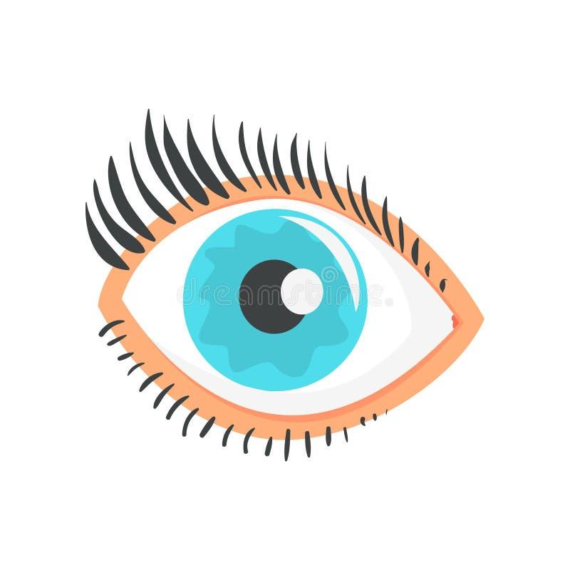 Hunman blauw oog met de vectorillustratie van het wimpersbeeldverhaal vector illustratie